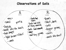 Under foot 14 grade 4 curriculum the inquiry project class chart observations of soils ccuart